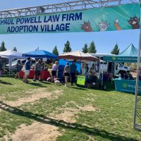 Adoption Village banner 2